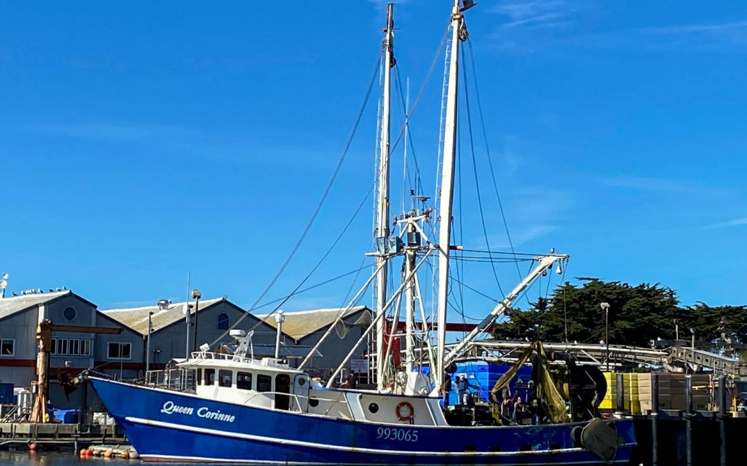 The Monterey Bay seafood economy turns another page with the arrival of the F/V Queen Corinne