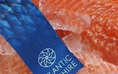 Lusamerica, Atlantic Sapphire ink distribution deal, bringing US land-based salmon into 200 US West Coast retailers