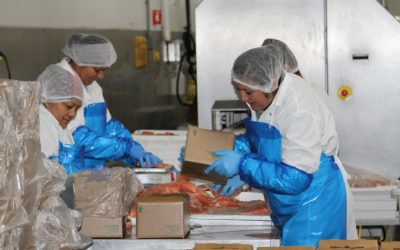 International Women's Day: Leaders at Lusamerica Foods